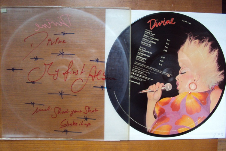 Divine Same Picture Disc Shake it up Yanguard 813185 1 ME